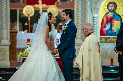 Dena and Navid Wedding Pictures-489