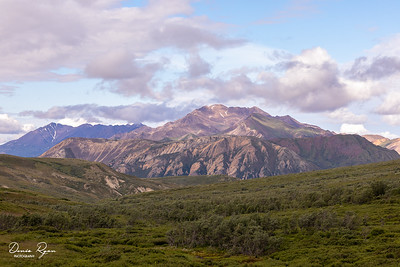 Sable Pass, Denali
