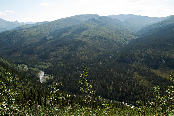 Looking down at Riley Creek