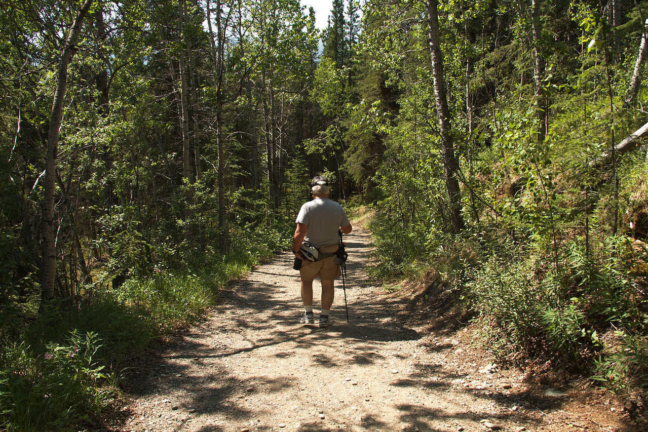 This section of the trail is part of a larger system around the visitors' center and is wide and accommodating.
