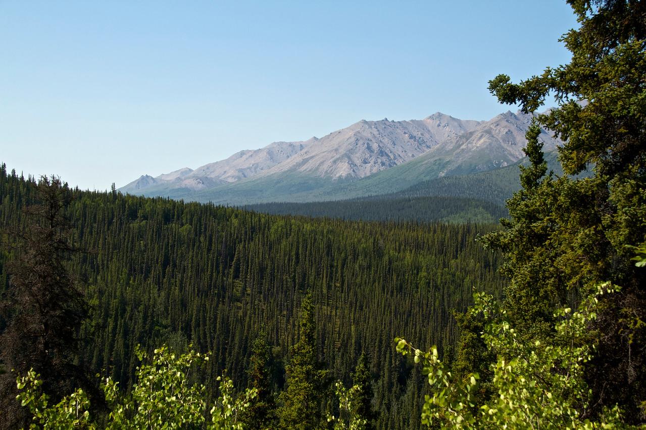 Random view along the trail