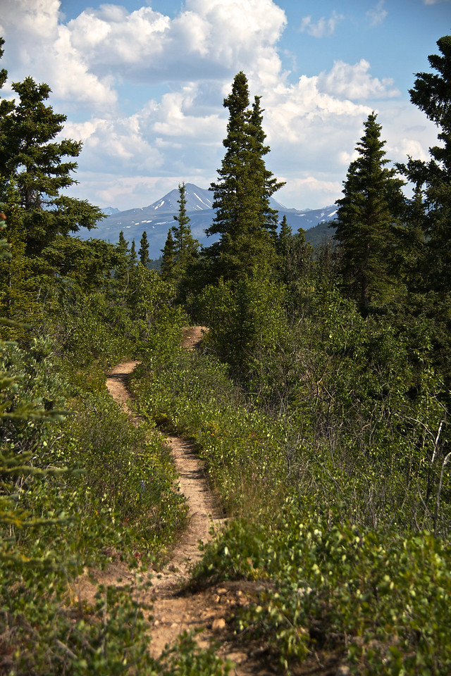 The trail along the ridge line