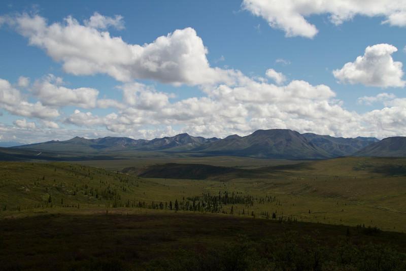 I never tire of the Denali landscape