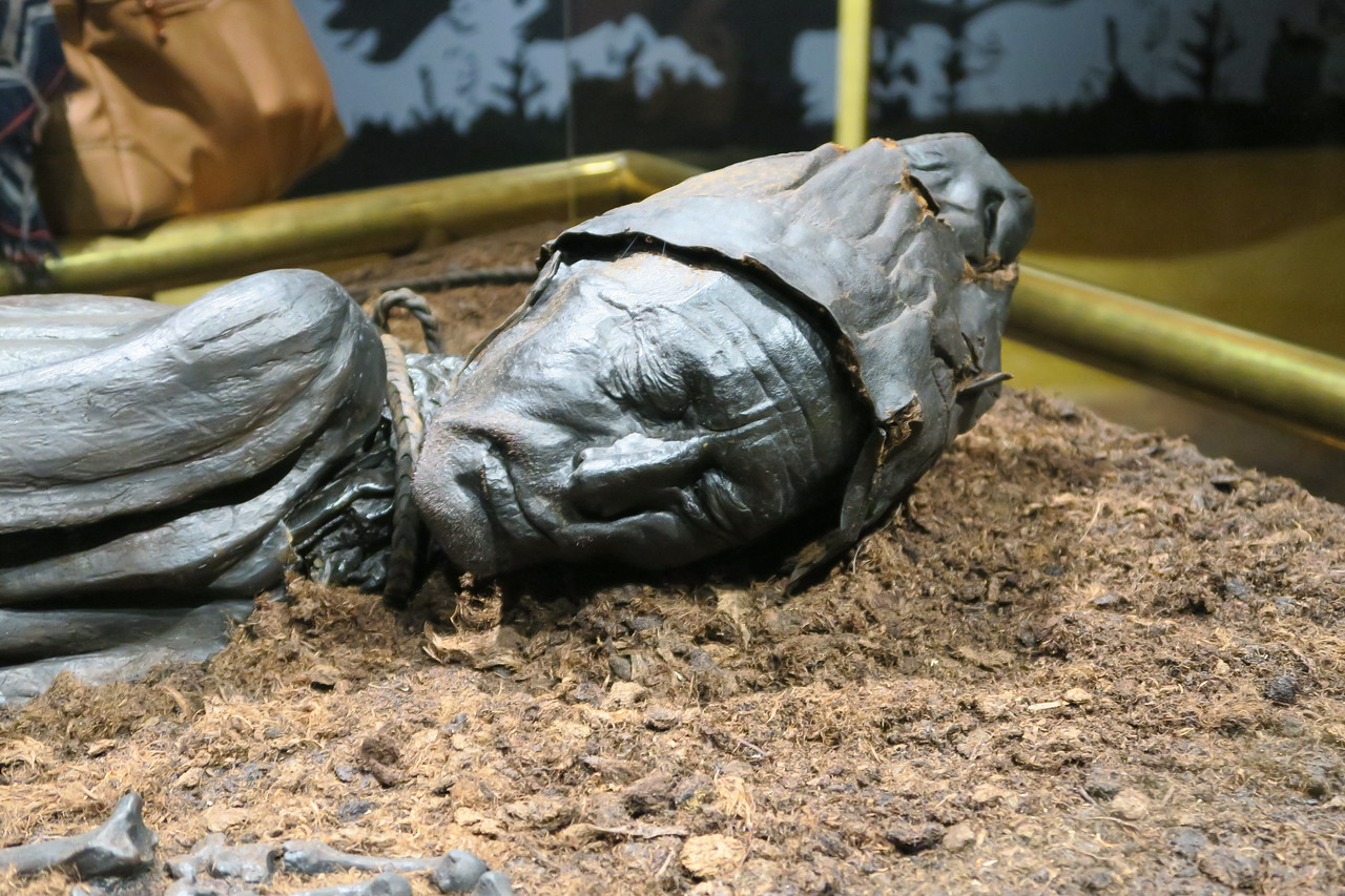 The Tollund Man, Silkeborg Museum
