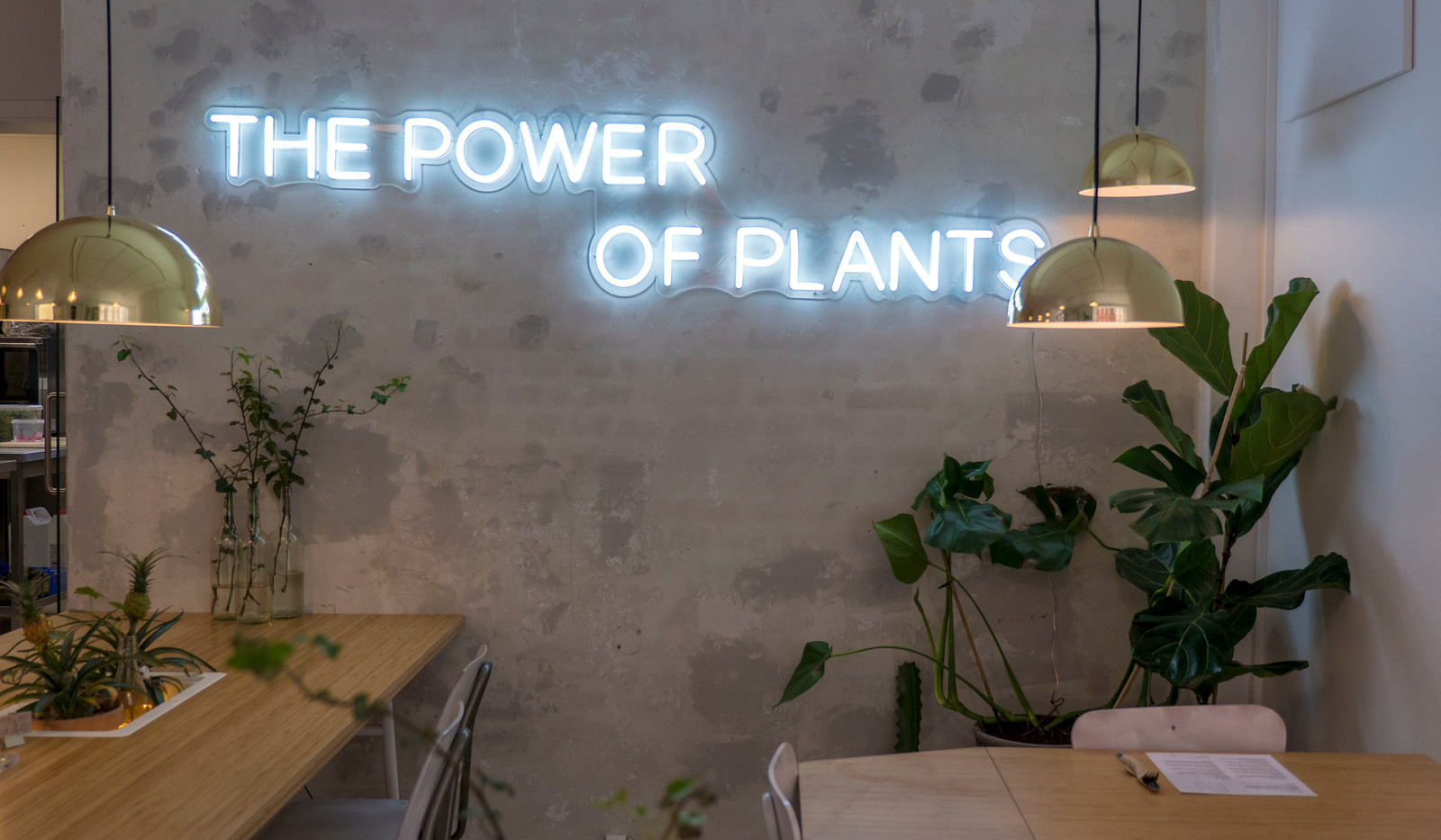 Plant Power Food - Vegan in Copenhagen