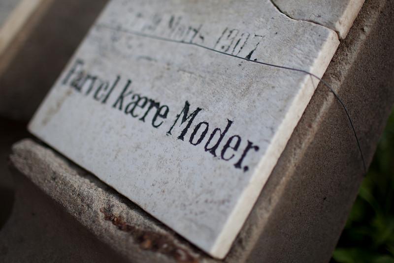 Goodbye Dear Mother