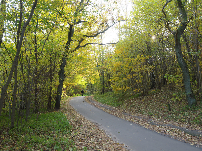 """Bicycle and walking path near """"the mill stream"""", between Nærum and Ravnholm."""