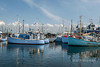 """Many shades of blue<br /> <br /> Blue boats, blue sky and blue water, Gilleleje Havn (harbour), Denmark<br /> <br /> In response to the comments, I have no idea why so many are blue, but since they seem to all be the same basic model, maybe they are part of a rental fleet, and that is the fleet colour.<br /> <br /> Other photos of the harbour & vicinity, plus historically interesting shots from the old Carlsberg Laboratory, can be seen here: <a href=""""http://goo.gl/a4qubL"""">http://goo.gl/a4qubL</a><br /> <br /> 1/05/14  <a href=""""http://www.allenfotowild.com"""">http://www.allenfotowild.com</a>"""