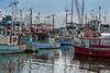 Colourful boats, Gilleleje Havn, Denmark