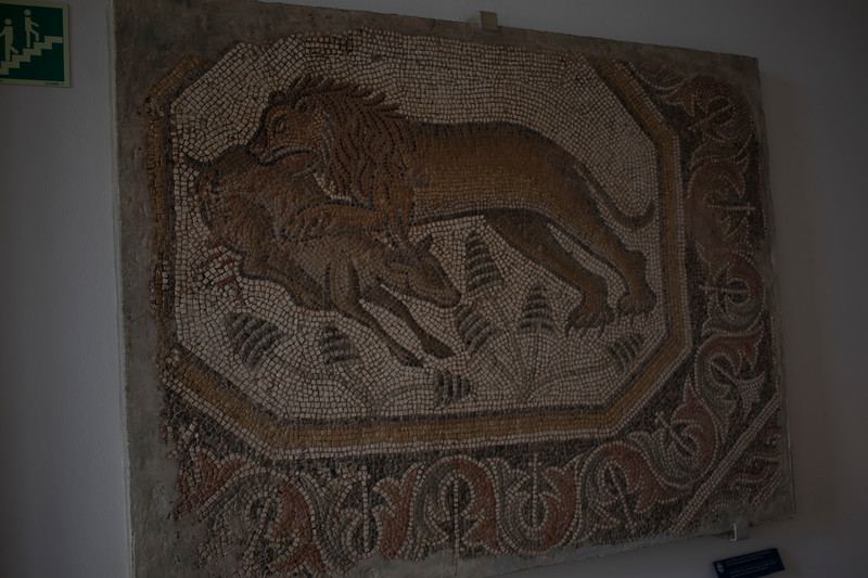 Roman mosaic at the National Museum