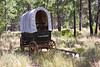This covered wagon is at the High Desert Museum near Bend, Oregon.