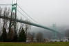 The St Johns Bridge on a foggy morning, with a few hundred Canada Geese foraging on the grass.