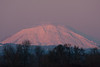 Mt St Helens with its lenticular cloud almost gone, but with nice sunset color, Sauvie Island.