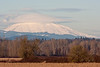 Mt St Helens with a lenticular cloud, Sauvie Island.