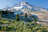 Mt Hood from just above Timberline Lodge