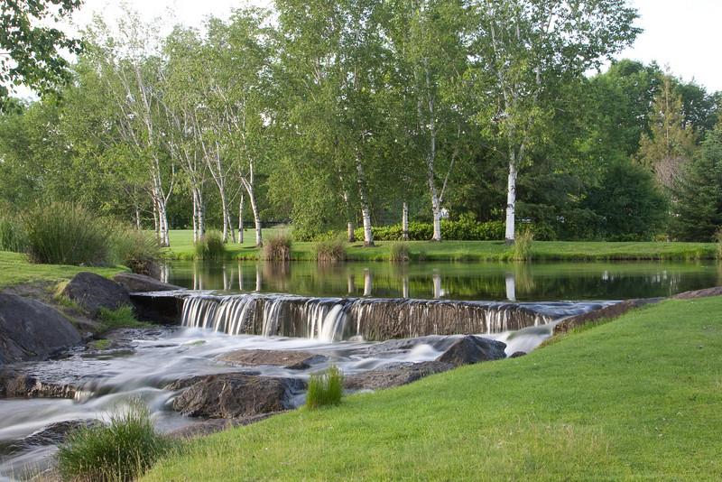 My favorite pond at Dawson Creek Park