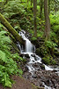 "Wahkeena Creek.   The gallery from the latest hike there is <a href=""http://2dphotography.smugmug.com/gallery/8480077_xfyy9/1/557650111_ZEyZw"">here</a>"
