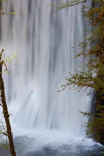 "Lower South Falls <a href=""http://www.oregon.com/hiking/silver_falls.cfm"">Silver Falls State Park</a>"
