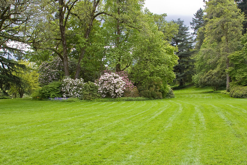 The lawn at Elk Rock Gardens in Portland. It's so nice to see everything green again after so much gray and brown.
