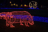 "<a href=""http://www.oregonzoo.org/Events/ZooLights/index.htm"">Zoo Lights!</a> A hippo at the Oregon zoo."