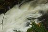 High flow cascading over Fishhawk Falls in northwest Oregon