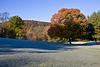 A maple in fall color near Tunkhannock, Pennsylvania