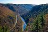 The Grand Canyon of Pennsylvania, aka Pine Creek Canyon.