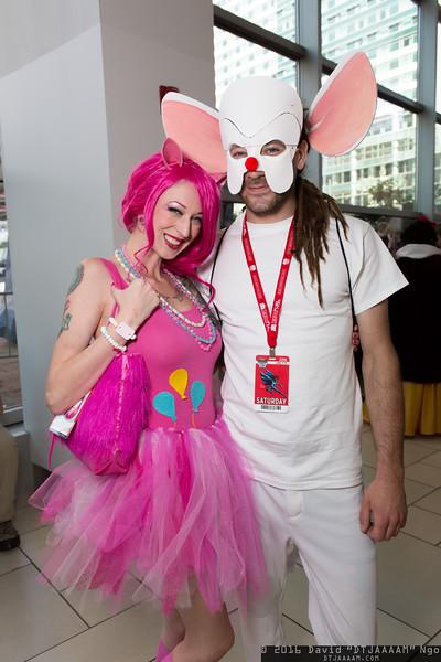 Pinkie Pie and Brain