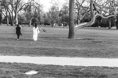 Denver Photo Betties City Park Blossoms Nikki A Rae Photography 05 02 2019-33