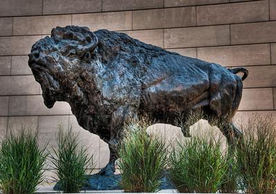 buffalo-statue-4