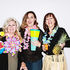 Denver Botanic Gardens Palms and Pineapples-Boulder Photo Booth Rental-SocialLightPhoto com