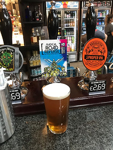 Stewart Brewing Radical Road Reverse IPA 4.6% at the Stan Ding Oar Dare