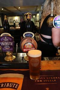 South Hams Brewery Wild Blonde 4.4% at the Creek End, Kingsbridge
