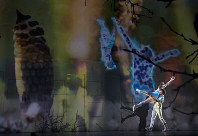 Dance Gala 2017 - Album 2