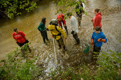 David Christiansen's Aquatic Biology class surveys fish in the Munn Brook in Westfield