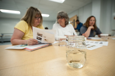 """Diving into the Standards:  The Hydrosphere. A course for Grade 3-8 teachers"""