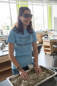 The 1st annual Biolympics hosted by the Biology Department at Westfield State University, May 2017