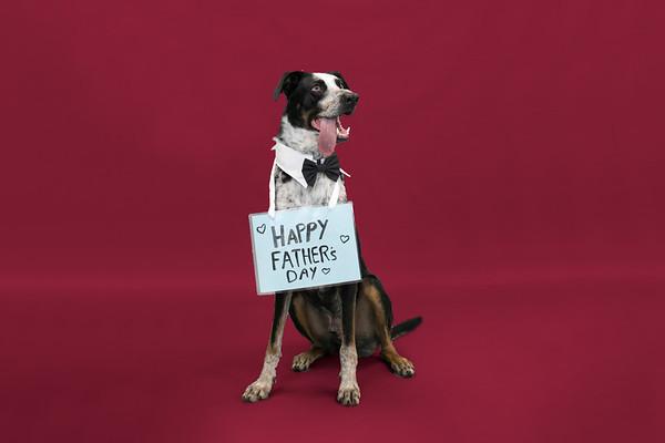 SHS_FathersDay2019-3
