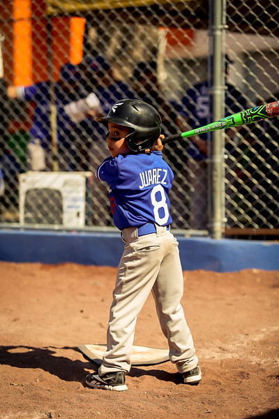 academia_beisbol_legion-48