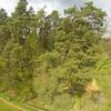 Abgeseilt<br /> Baumklettern Sofie vom Start bis zur Landung