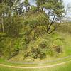 Schaukeln in 10m Höhe<br /> Baumklettern Sofie vom Start bis zur Landung