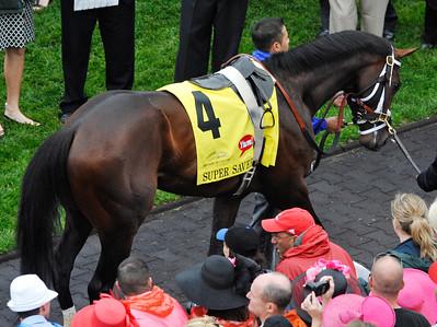 Derby 136 2010