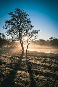 Riverfront morning