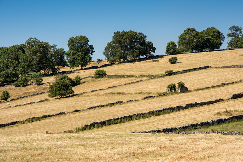 Summer in the Derbyshire Dales