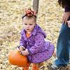 2013 10 18 Pumpkin Hunt18
