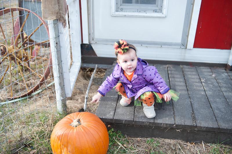 2013 10 18 Pumpkin Hunt3
