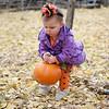2013 10 18 Pumpkin Hunt20