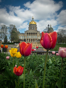 Iowa Capitol in Spring