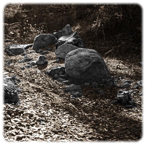 Descanso Gardens, Image #9