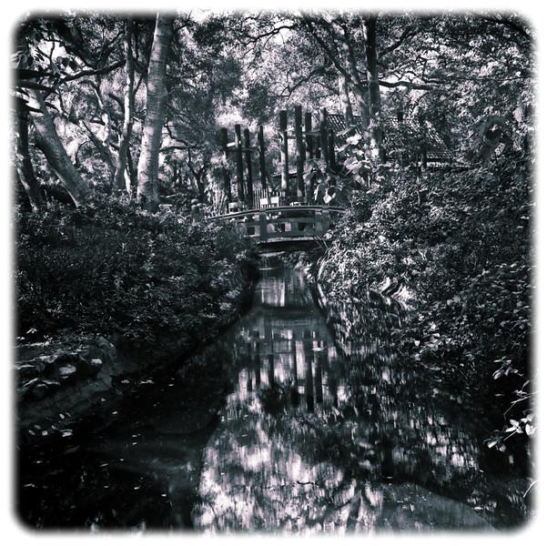 Descanso Gardens, Image #7